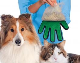 Перчатка для вычесывания шерсти правая Зелёная фото 1