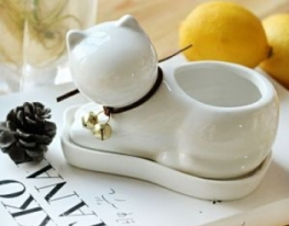 Травянчик Белый котик фото