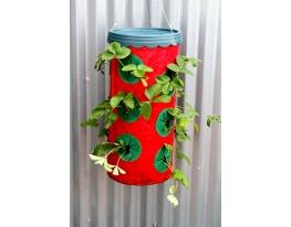 Приспособление для выращивания клубники Planter фото