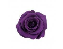 Долгосвежая роза - бутон Фиолетовый аметист фото