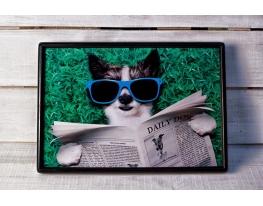 Поднос на подушке Пес в очках
