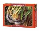 Пазл Тигр на 1500 элементов фото