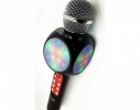 Колонка WSTER WS-1816 с микрофоном-караоке Черная фото 3