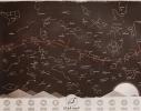 """Светящаяся карта звездного неба """"Через тернии к звездам"""" фото 2"""