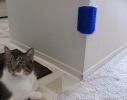 Щетка - чесалка угловая игрушка для самогруминга кошек Self Groomer фото 5