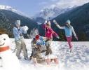 Снежколеп фиолетовый - Снежка в форме мяча фото 1