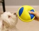 Игрушка скользящая для собак K9 Cruiser фото 1