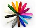 Набор Биоразлагаемого PLA пластика для 3D Ручки 1.75 мм 150 метров (15 цветов) фото