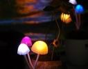Светодиодный светильник-ночник Аватар фото 1