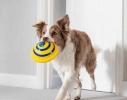 Игрушка диск для собак с пищащим звуком Гав планер фото