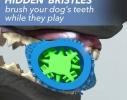 Первая в мире самоочищающаяся зубная щетка для собак ChewBrush фото 3