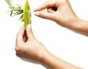 Нож для зачистки зелени, кале, мангольд фото 3