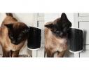 Щетка - чесалка угловая для самогруминга кошек Self Groomer Чёрная фото 9