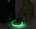 Светящийся ошейник на аккумуляторе (USB зарядка) фото 1