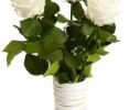 Три долгосвежие розы Белый Бриллиант в подарочной упаковке фото 3