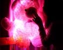 Светящийся мишка фото 3