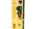 Долгосвежая роза Багровый Гранат в подарочной упаковке фото 1