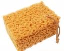 Коралловая губка для больших поверхностей фото 7