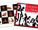 Шоколадный набор Камасутра Мини фото