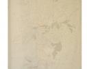 Картина на холсте по номерам Розалии фото 1