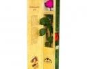 Долгосвежая роза Малиновый Родолит в подарочной упаковке фото 3