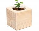 Набор для выращивания Экокуб Сирень фото 2