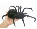 Паук черная вдова Black Widow Spider на пульте управления фото 1