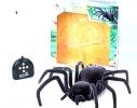 Паук черная вдова Black Widow Spider на пульте управления фото 2