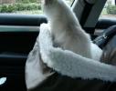 Сумка для животных в авто Pet Booster Seat фото 4