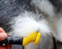 Фурминатор для кошек и собак 10,5 см. фото 2