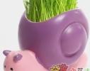 Керамический травянчик с семенами Улитка фото
