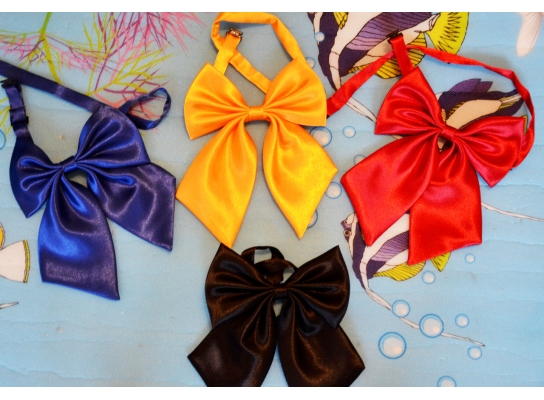 Детский галстук-бант (бабочка) фото