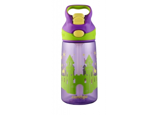 Детская бутылка Fairy Tale Graphic Contigo фото