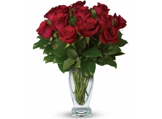 Букет долгосвежих роз Багровый Гранат фото