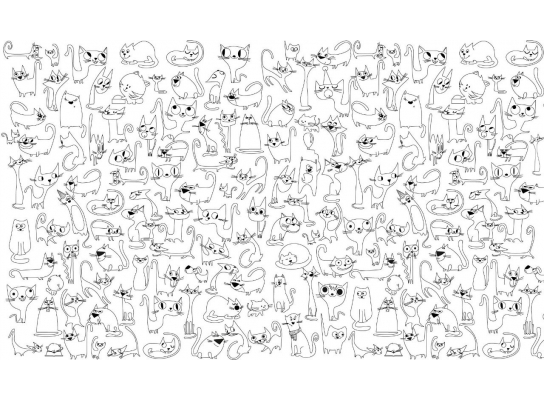 Обои-раскраски Веселые коты 60х100см фото