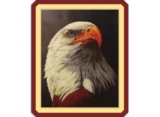 Набор для вышивки картины Гордый Орел 73х58см фото