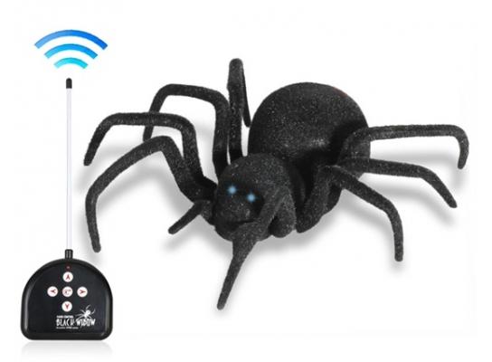 Паук черная вдова Black Widow Spider на пульте управления фото