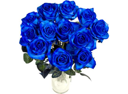 Букет долгосвежих роз Синий Сапфир фото
